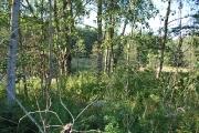 Виды лагеря лето 09